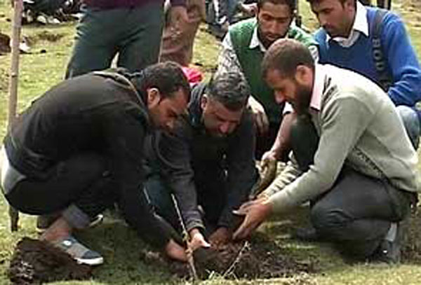 Planting_trees_in_Kashmir_295