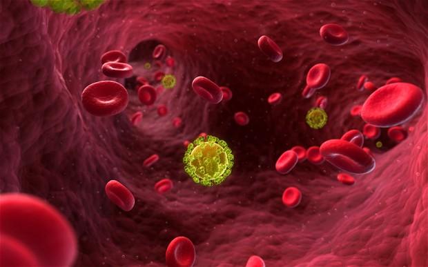 hiv-virus_2548220b
