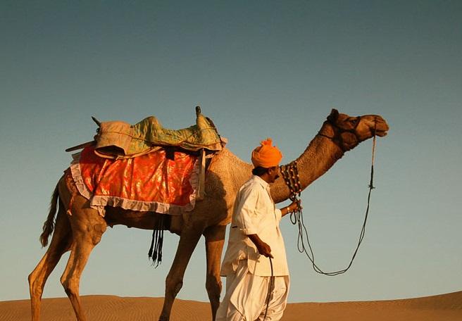 khuri_desert_camel