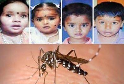 540x350-dengue-fevr