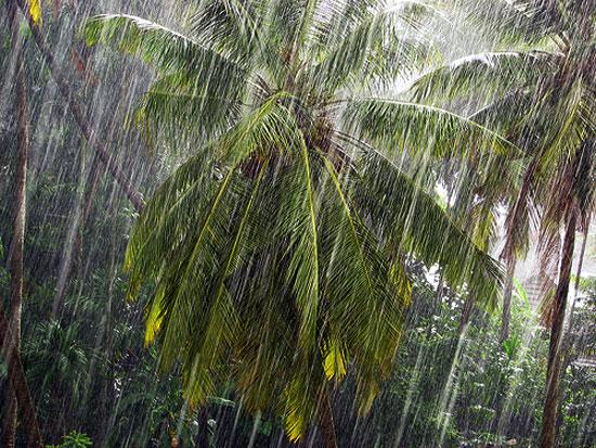 Rain_start_mlore_2
