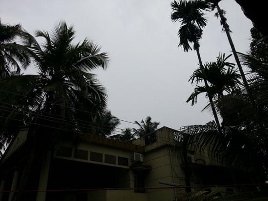 Rain_start_mlore_4