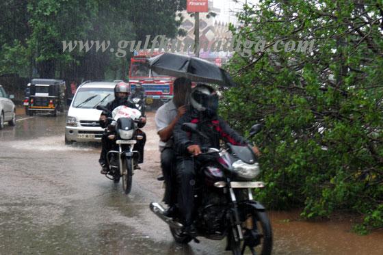 Costal_havi_rain_10