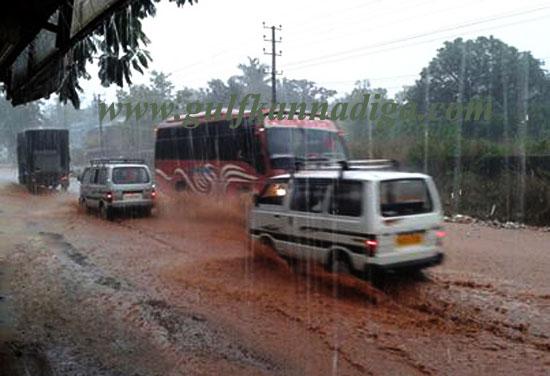 Costal_havi_rain_6