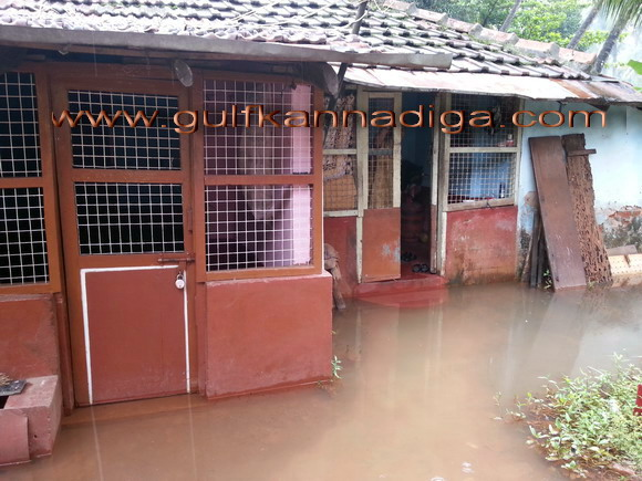 Pandeshwara_rain_problm_7