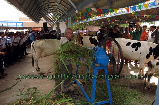 World_Milk_Day_23