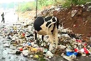 bangalore_garbage_generic