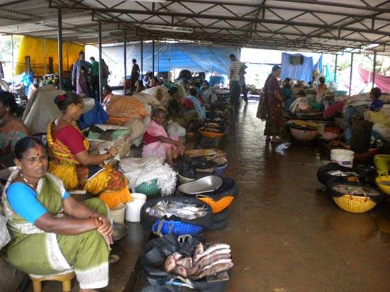 udupi fish market