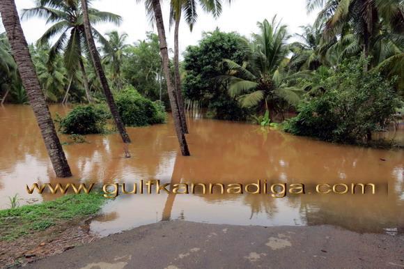 Kallapu_Flood_News_55