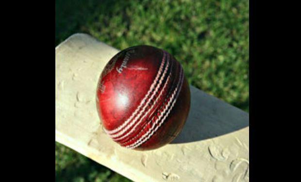 cricket_5_
