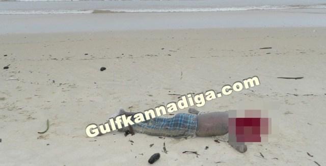 gangolli-dead-body-29-5