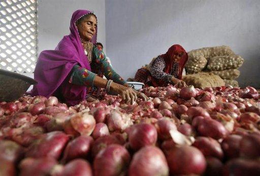 onion_price_spiralling
