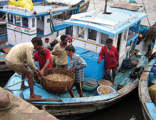 fish-catching_start
