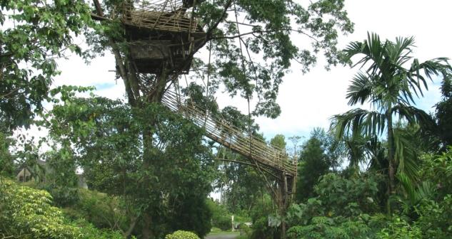 treeh-house-mawlynnong-meghalaya