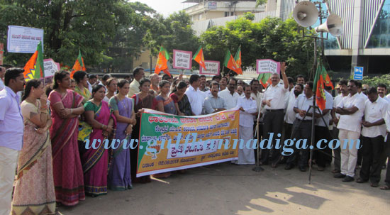 bjp_protest_dc-offc_2