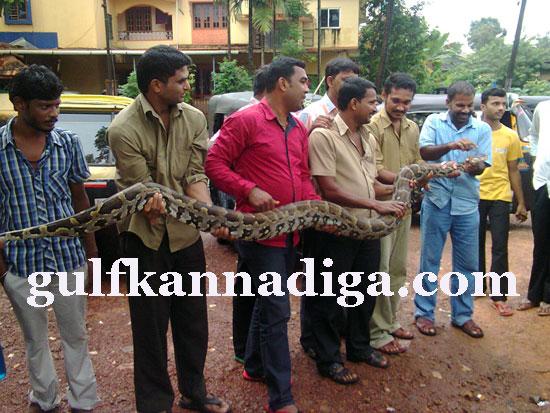 manipal-python1