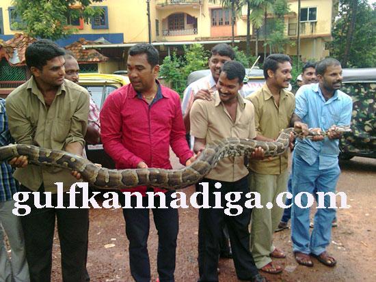manipal-python2