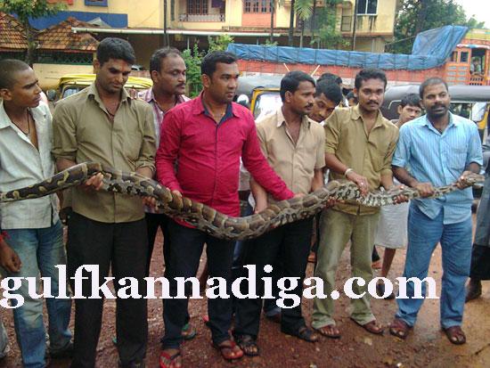 manipal-python4