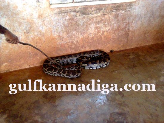 manipal-python9