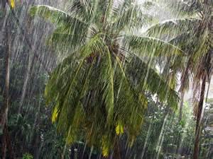 rain_soaring_temperature-1