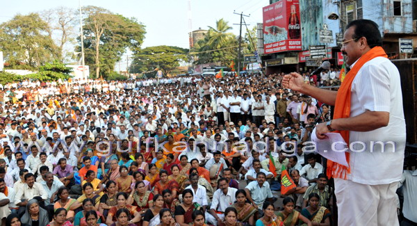 BJP_stage_protest_1