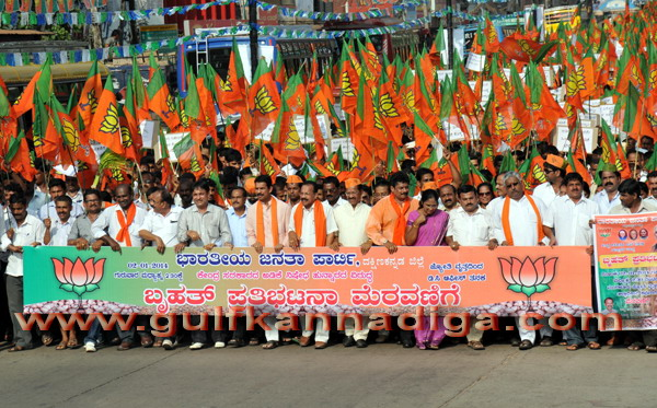 BJP_stage_protest_11