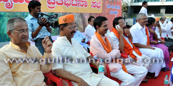 BJP_stage_protest_6
