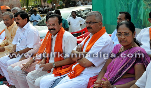 BJP_stage_protest_8