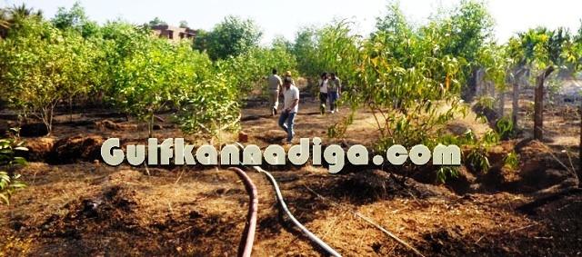 fire-news-koteshwara-1