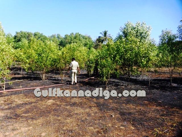 fire-news-koteshwara-14