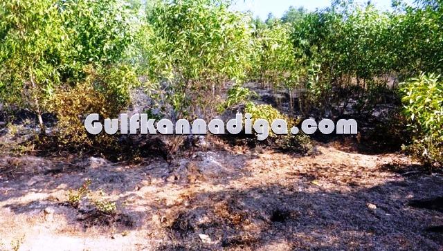 fire-news-koteshwara-5