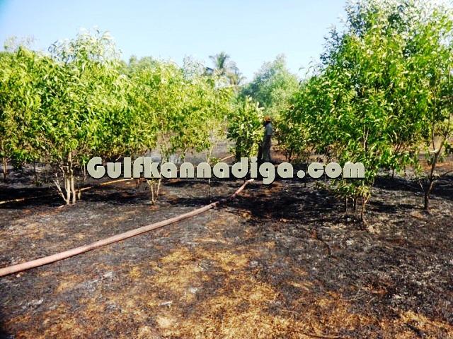 fire-news-koteshwara