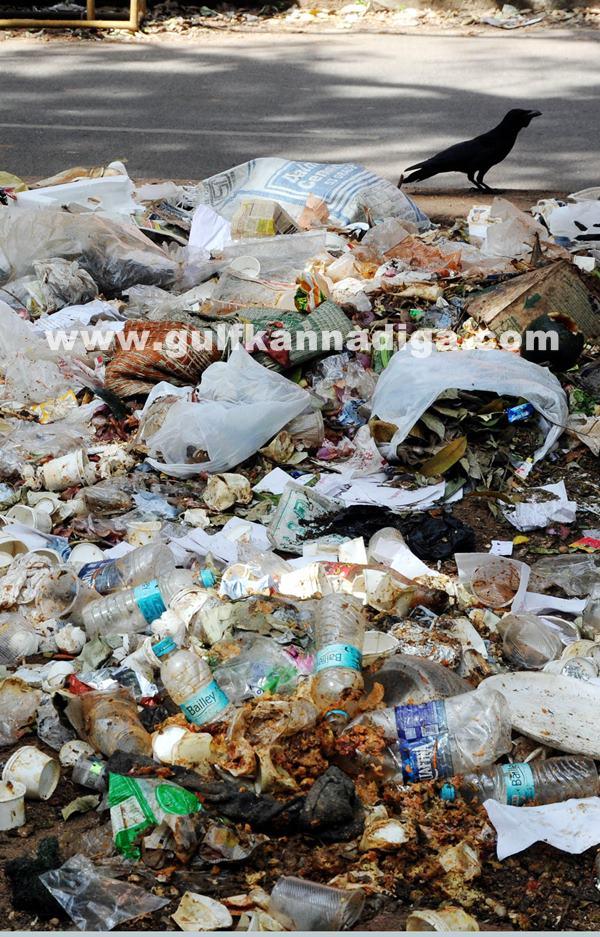 Bang Garbage_June 25_2014_006