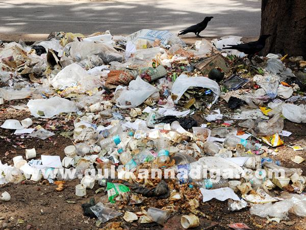 Bang Garbage_June 25_2014_007