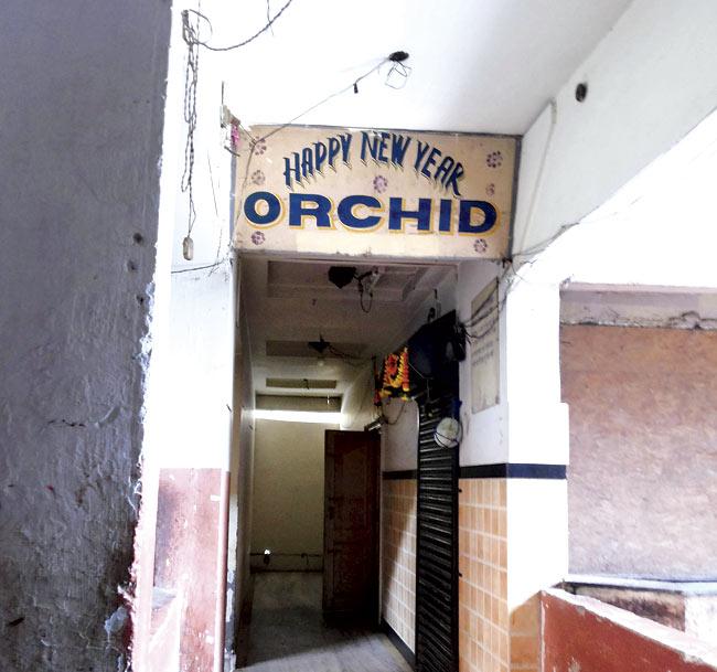 Orchid-Bar