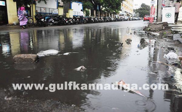 Rain_July 9_2014_008