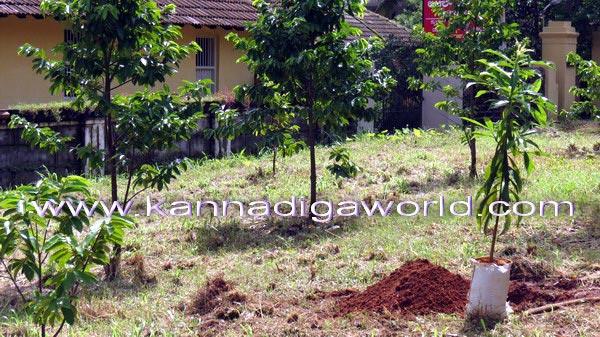 Vanamahotsava_Press_9a