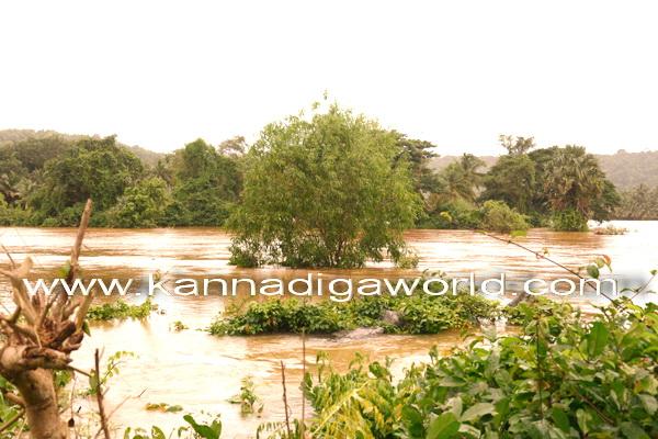 flood_mundly_photo_7