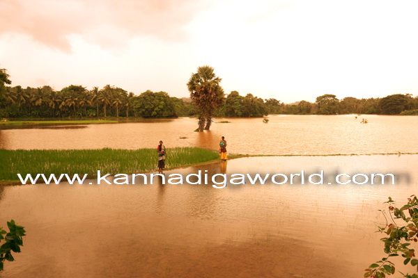 flood_mundly_photo_9