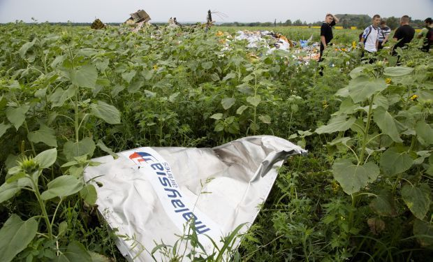 malaysia Airlines_clrashed_Ukraine_Sunflower