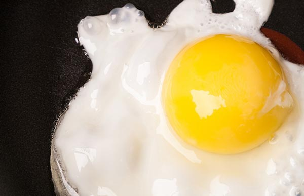 Saturated Fat Egg 3