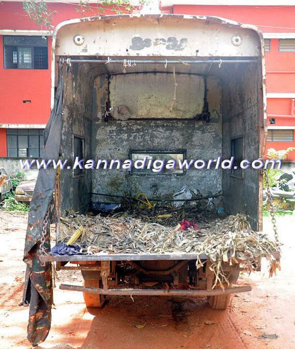 Bantwal_cattle_Crime_4