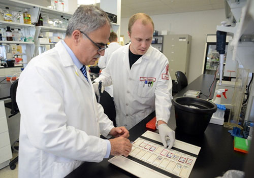 researchers-in-g1sssenetic-surgery-at-temple-university-develop