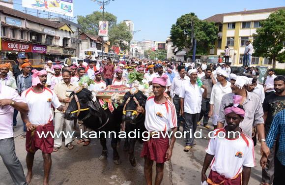 Kambla_protest_photo_10