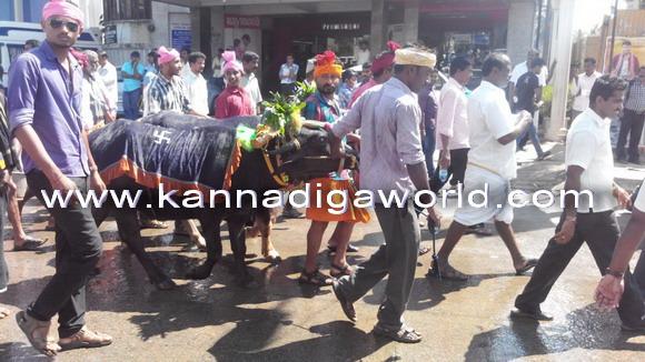 Kambla_protest_photo_14