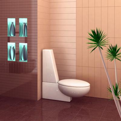 toilet-day