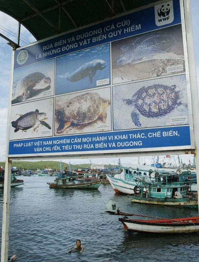vietnam-poaching-afp-000_hkg2004091614092-20141125-full