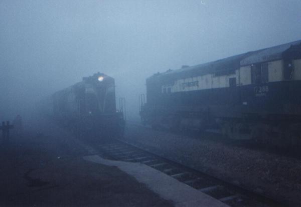 wdm2_ldh_foggy1_ggn