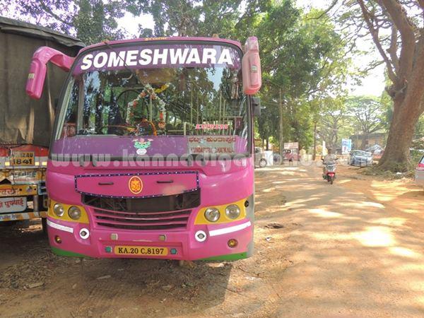 Bus_Lorry_halle (5)