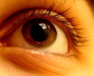Human-Colour-Vision